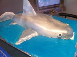 Shark Cake for Austin